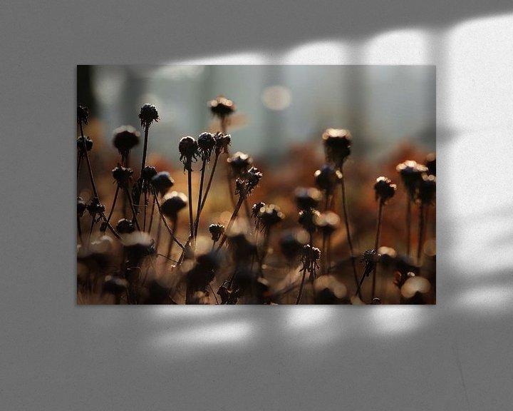 Sfeerimpressie: GREETING THE DAY van Ans de Bie