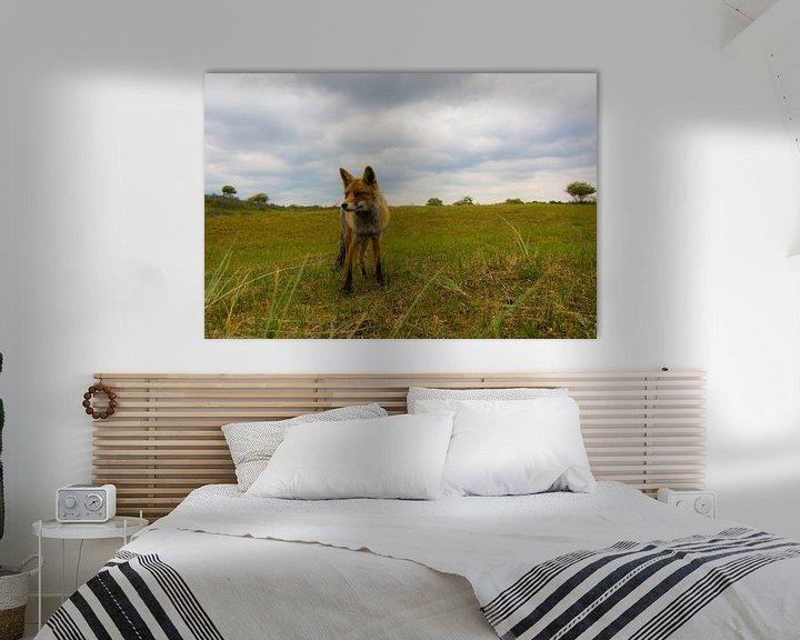 Sfeerimpressie: Vos midden in het landschap van Robin Voorhamm