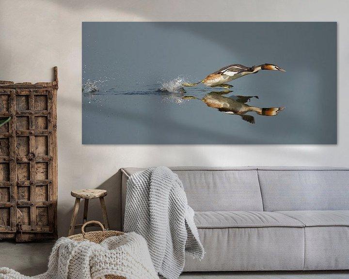 Sfeerimpressie: Fuut loopt over het water van Erik Veldkamp