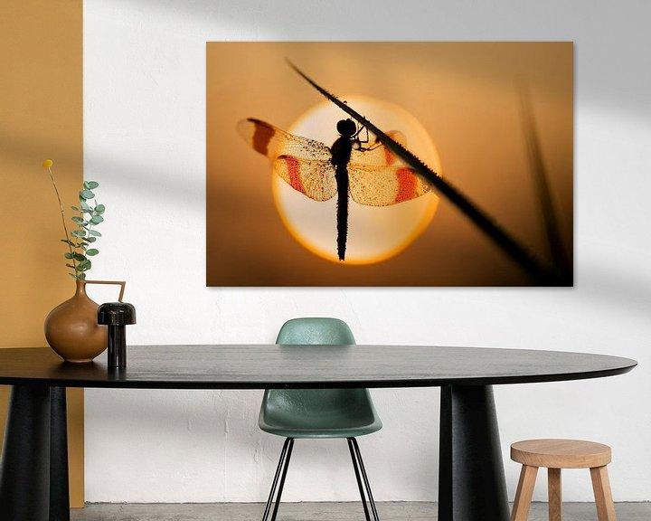 Sfeerimpressie: Bandheidelibel bij zonsopkomst van Erik Veldkamp