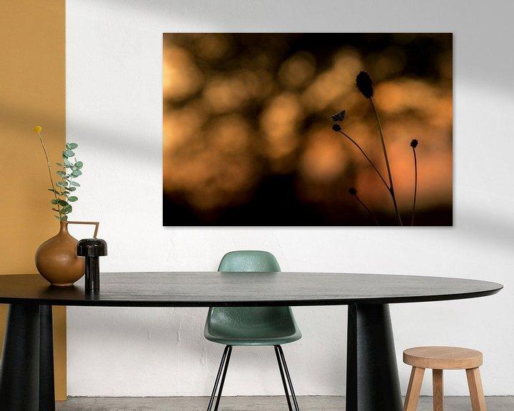 Sfeerimpressie: Aardbeivlinder bij zonsopkomst van Erik Veldkamp