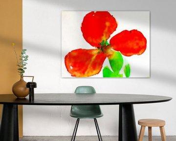 red flower  van M.A. Ziehr