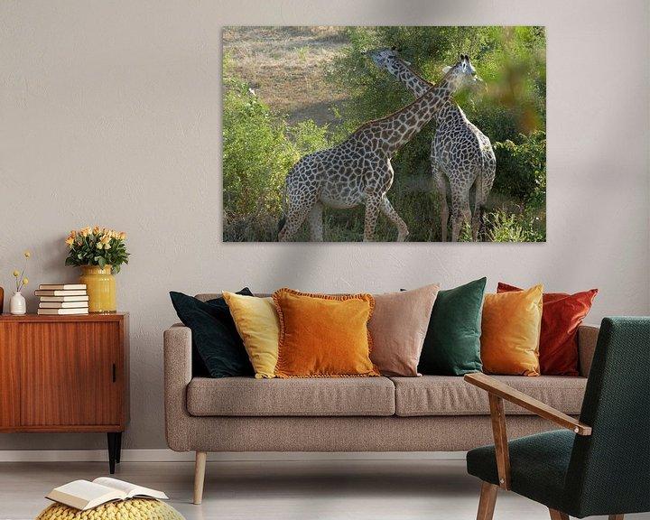 Sfeerimpressie: Giraffen van Peter Polling
