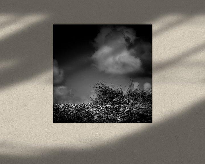 Sfeerimpressie: Grass on the rocks van Ruud Peters