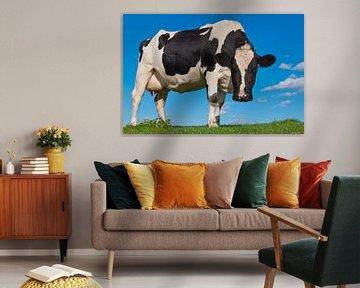 Schwarz-weiße Kuh sieht neugierig aus. von Ruud Morijn