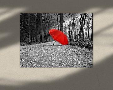 """the red umbrella"" / "" de rode paraplu"" von Pascal Engelbarts"