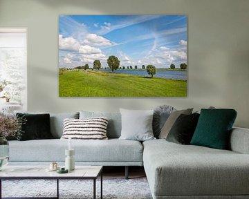 Typische holländische Landschaft auf dem Fluss von Ruud Morijn