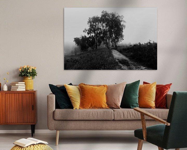 Impression: Misty Morning Birches sur William Mevissen