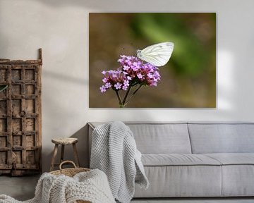 vlinder von Jellie van Althuis