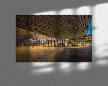 Rotterdam Centraal van Henri van Avezaath