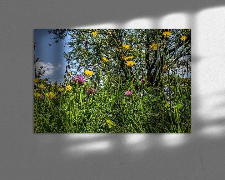 Sfeerimpressie: Voorjaarsbloemen van Frans Blok