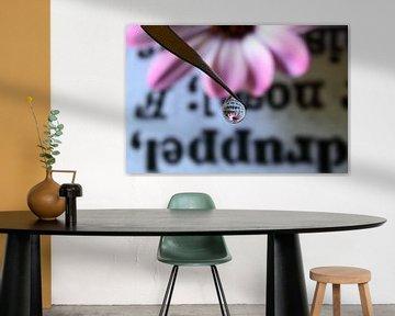 Wörterbuch mit rosa Blume von Inge van den Brande