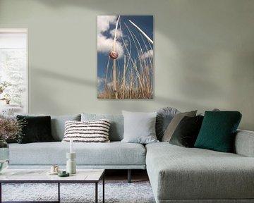 de slak, die Schlacke,  van Yvonne de Waal Malefijt