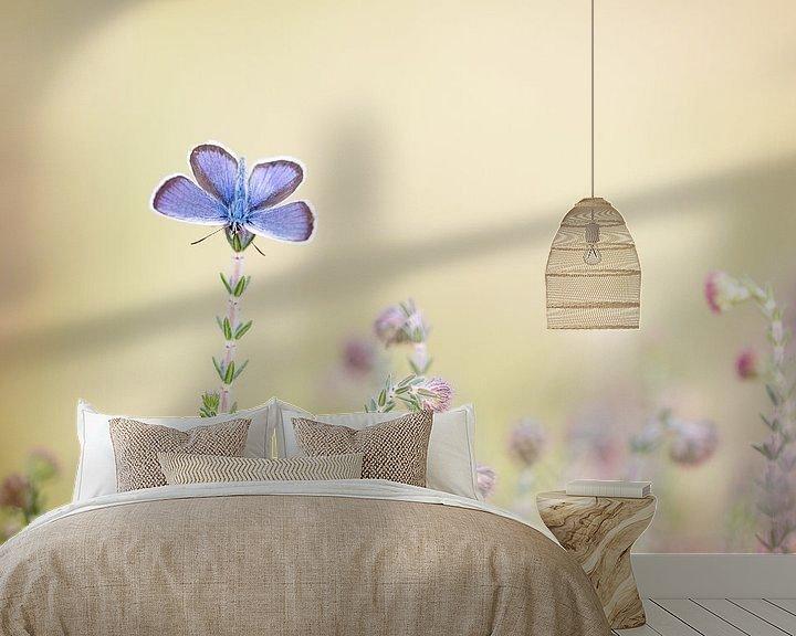 Sfeerimpressie behang: Heideblauwtje van Judith Borremans