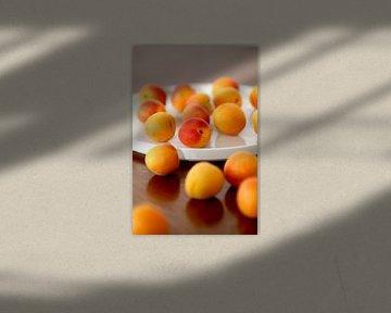 Aprikosen von Thomas Jäger