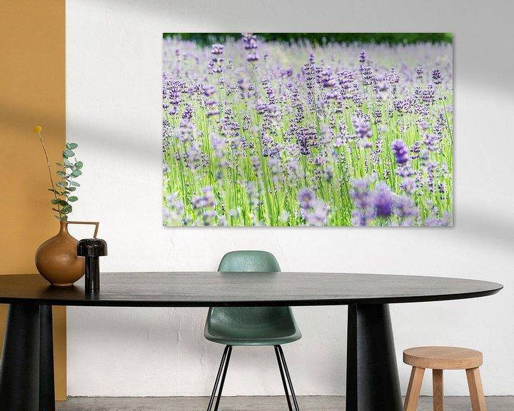 Sfeerimpressie: Zomerse lavendel van Ratna Bosch