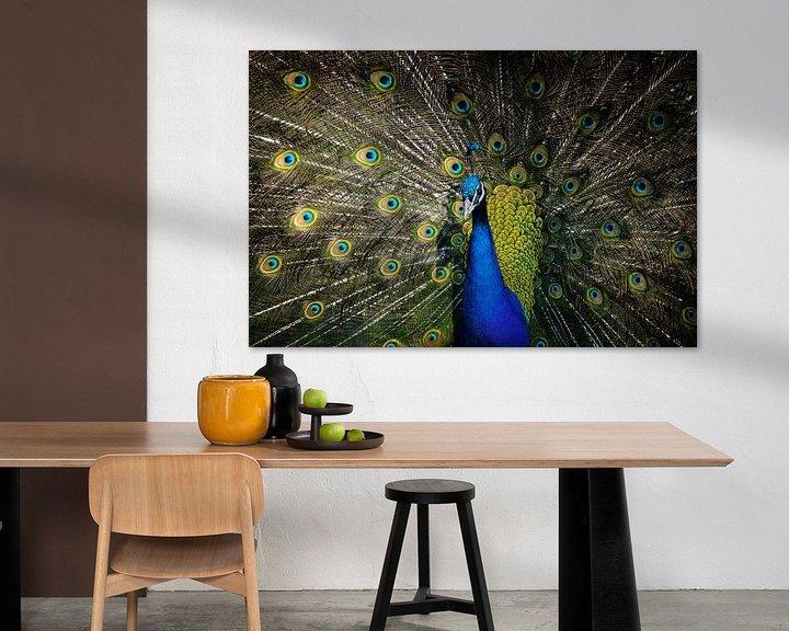 Sfeerimpressie: Keep the color van Dick Nieswaag