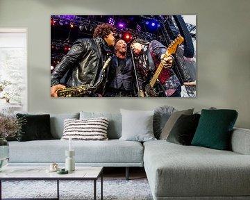 Bruce Springsteen & the E Street Band  von Shui Fan
