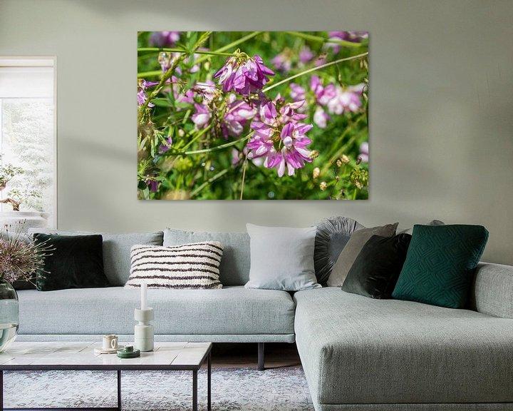 Sfeerimpressie: coronila varia in botanical garden van Compuinfoto .
