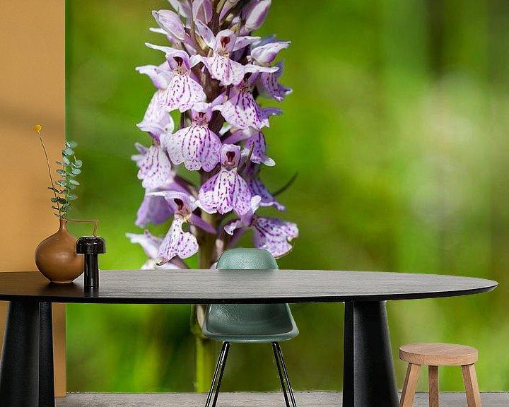 Sfeerimpressie behang: orchis majalis in botanical garden holland van Compuinfoto .