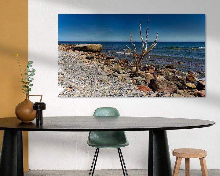Sfeerimpressie: Strand zee  rots en boom,bij  Cape Arkona Rügen Oostzee. van Twan van den Hombergh