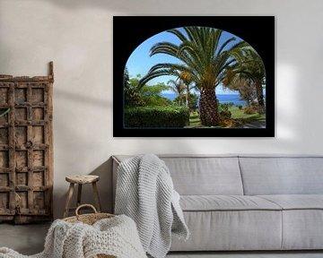 Palmboom op Madeira von Ina Hölzel