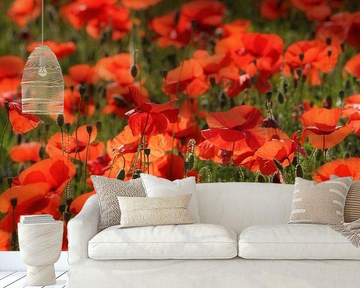 Sfeerimpressie behang: Poppies van Ruud Peters