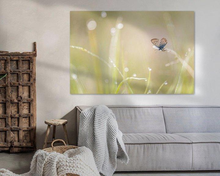 Sfeerimpressie: Heideblauwtje in het gras van Erik Veldkamp