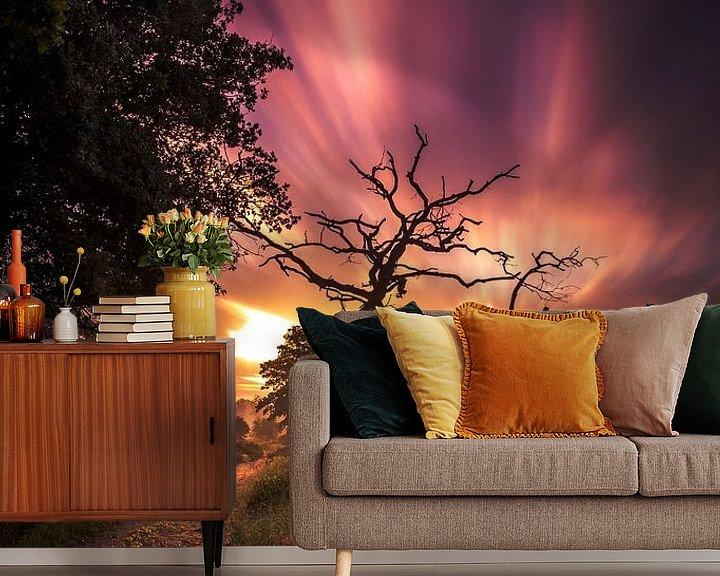 Sfeerimpressie behang: zonsopkomst nationaal park Sallandse heuvelrug van Martijn van Steenbergen