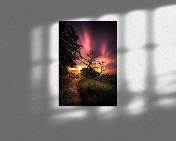 Sfeerimpressie: zonsopkomst nationaal park Sallandse heuvelrug van Martijn van Steenbergen