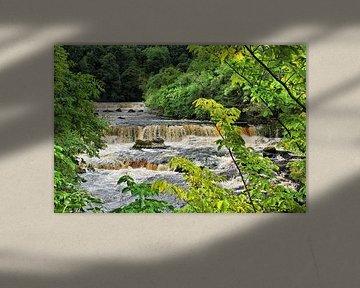 Aysgarth Upper Falls - Wasserfall von Gisela Scheffbuch