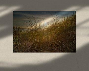 Achter de duinen van Arjen Roos
