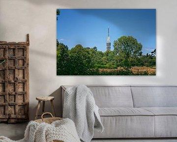 Hilversum, Hexenwiese und Fernsehturm von Pascal Raymond Dorland
