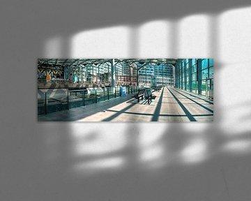 Den Haag station van Ariadna de Raadt-Goldberg