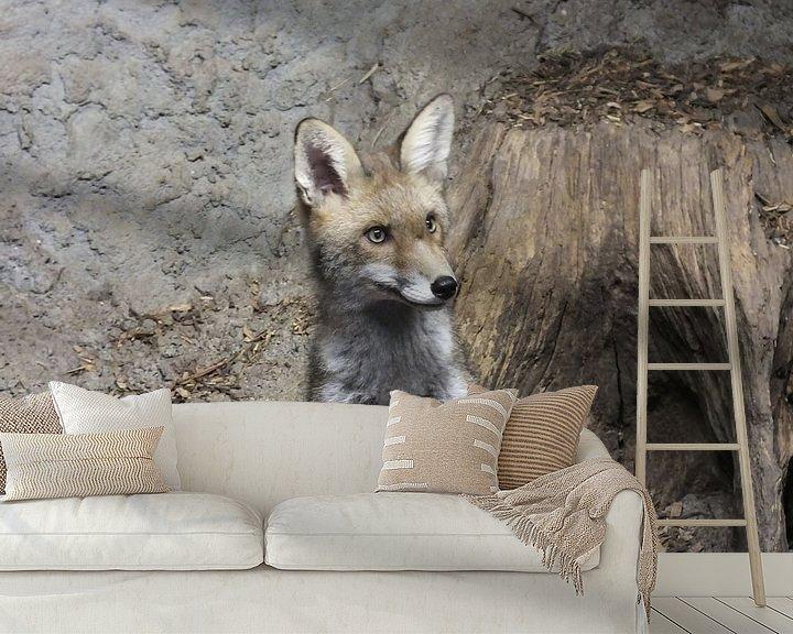Sfeerimpressie behang: oplettende vos van Pascal Engelbarts