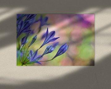 Blauwe bloemen van Corinne Welp