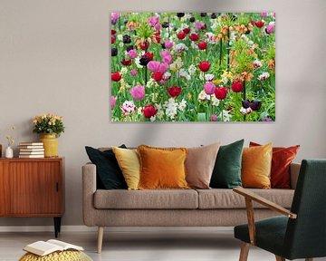 Flower field in the Floriade, the Netherlands von Tamara Witjes