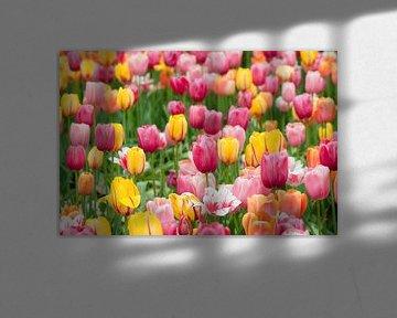 Tulpenveld in de Floriade van Tamara Witjes