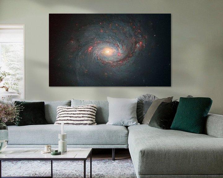 Sfeerimpressie: M77 Een spiraalstelsel van André van der Hoeven