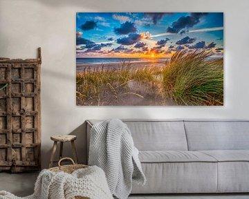 Summer Beach July - Hollandse Duinen