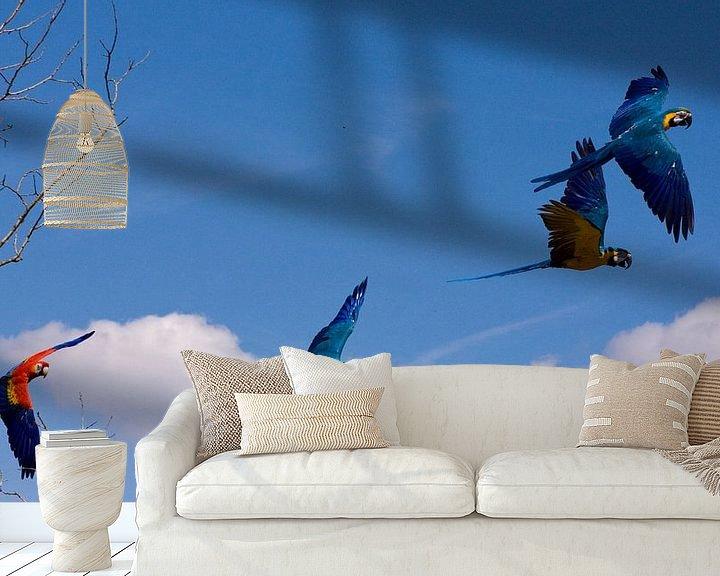 Sfeerimpressie behang: Twee koppels papegaaien in volle vlucht van André van der Hoeven