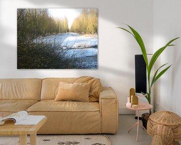Witte deken op bosvlakte van Sjoerd Jelle Wiersma