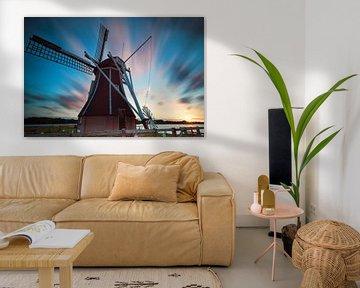 The Queen of the windmills van Olha Rohulya