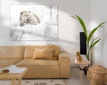 Ijzige ijsbeer van Alexander Koenders