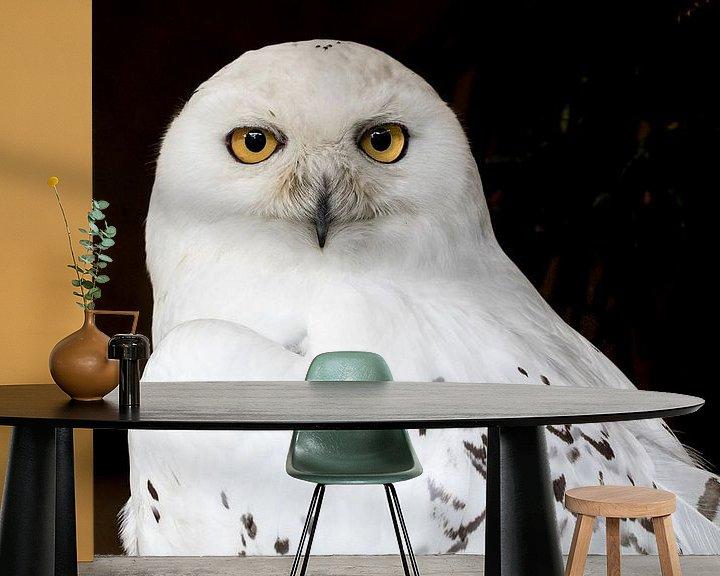Sfeerimpressie behang: De blik van de Sneeuwuil van Marcel Runhart