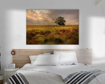 Eenzame boom in landschap, Lonely tree in landscape van Alex Riemslag