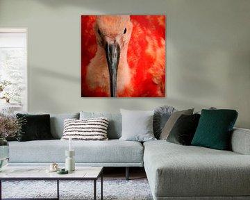 Bird van Anne Koop
