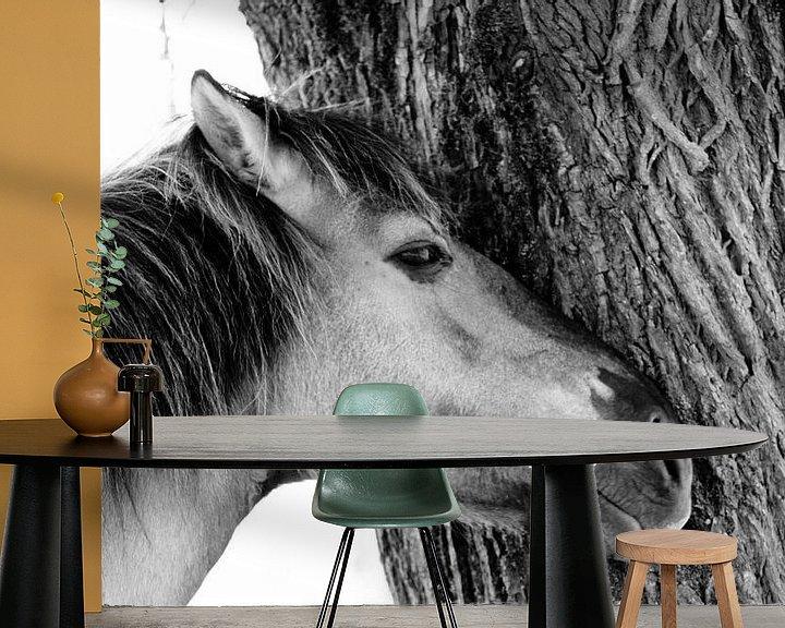 Sfeerimpressie behang: Konik horse van Anne Koop