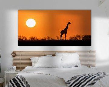Afrikaanse zonsopkomst van Richard Guijt Photography