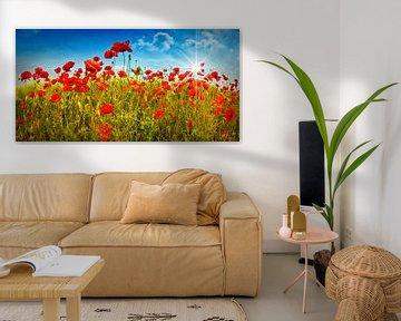 Idyllic Field of Poppies with Sun van Melanie Viola